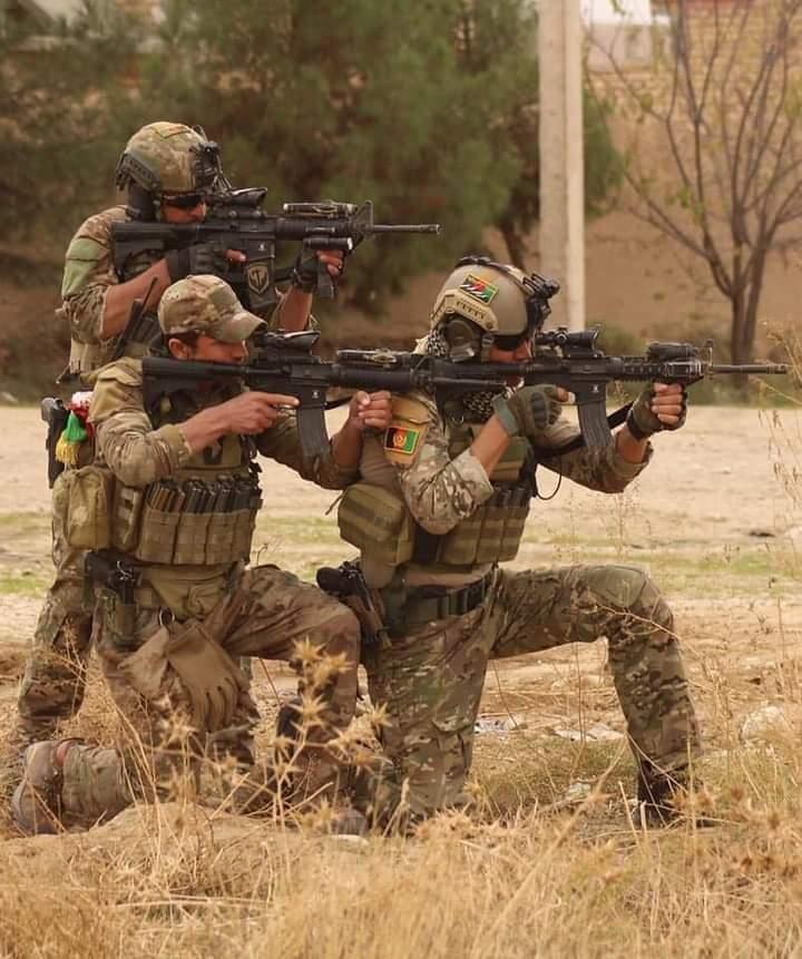 هلمند کې ۳۵۱ طالبان وژل شوي