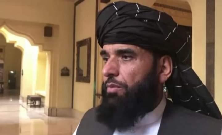 طالبان بهرني جنګیالي ولې له خپلو ډلو نشي شړلی؟