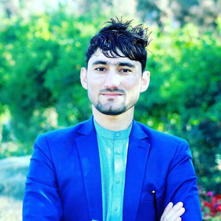 د افغانيو کارول، اقتصاد ته څه ورکوي؟